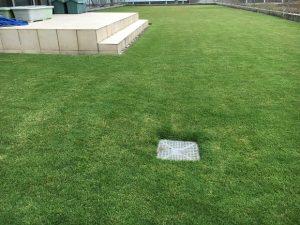2016年10月4日の朝の裏庭の芝生。