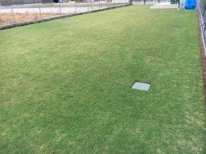 2016年10月18日の朝の裏庭の芝生。