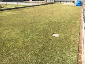 2016年12月3日の裏庭の芝生。